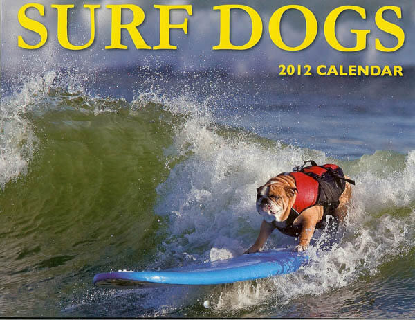 Dog Calendars, Puppy Calendars, Buy Online