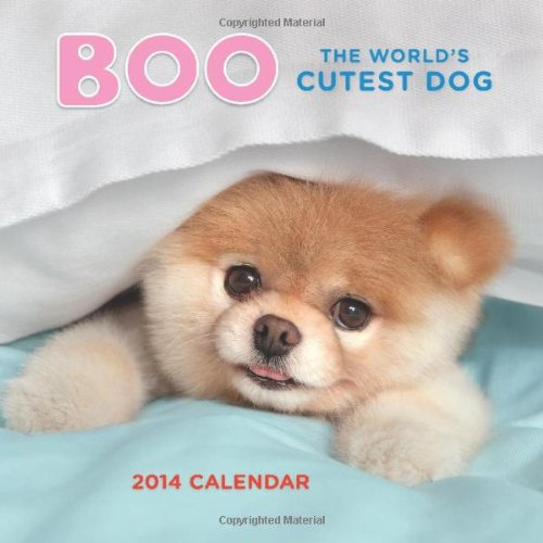 BEST DOG and PUPPY CALENDARS 2016