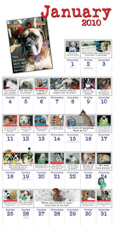 DOG and PUPPY CALENDARS 2016,2017