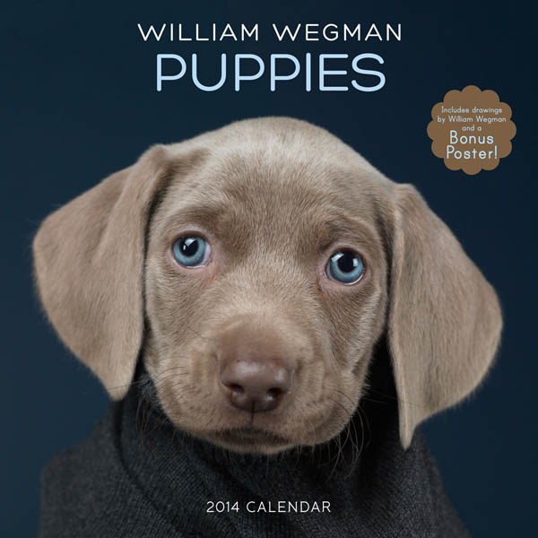 DOG and PUPPY CALENDARS 2015, 2016, 2017, 2018, 2019, 2020