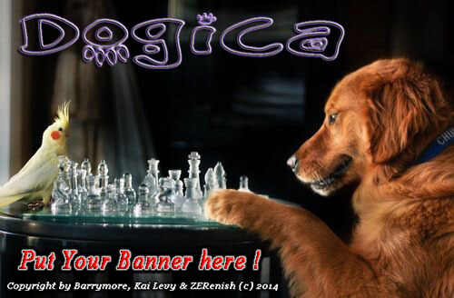 THANK YOU FOR SUPPORTING DOG LOVERS COMMUNITY WORLDWIDE !