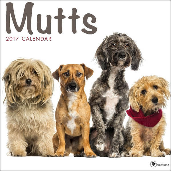 DOG and PUPPY CALENDARS