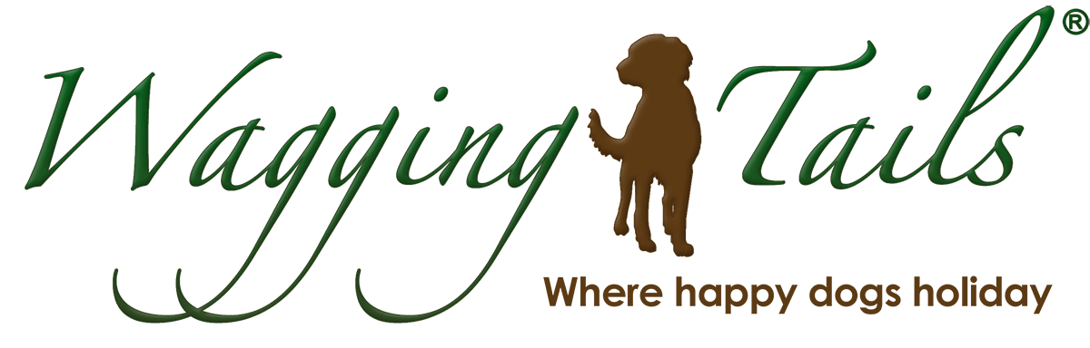 WWW.WAGGINGTAILSUK.CO.UK