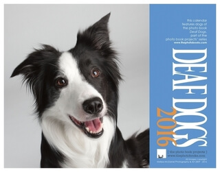 DEAF DOG and PUPPY CALENDARS 2016