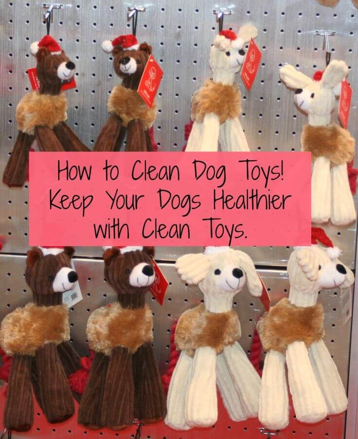 CLEAN DOG and PUPPY TOYS