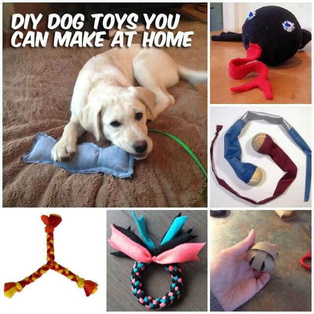 dog and puppy toy