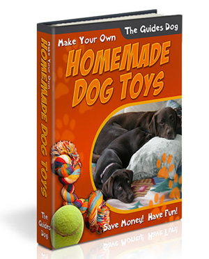 Buy dog and puppy toys book