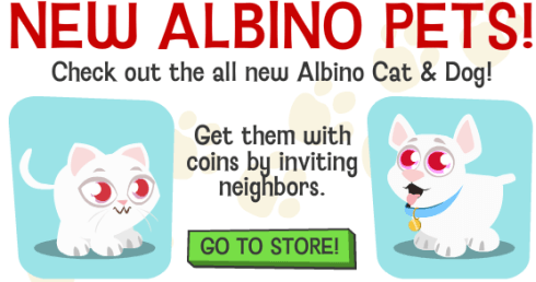 ALBINISM IN DOGS vs ALBINISM IN CATS