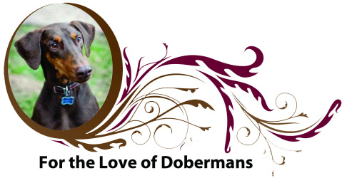 WWW.FORTHELOVEOFDOBERMANS.COM
