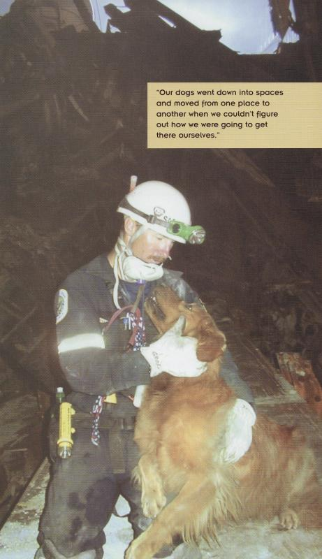 DUSTY - this photo (c) by Dog Heroes of September 11th. Kennel Club Books