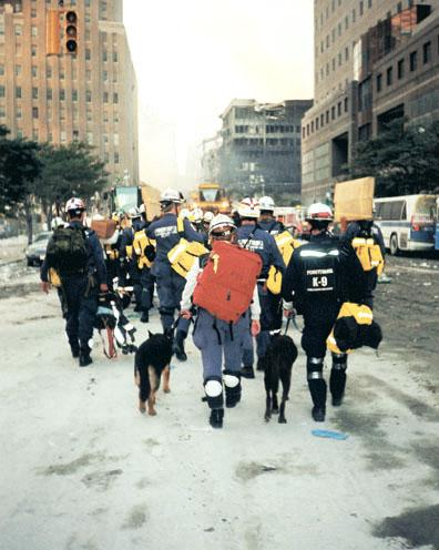 DOG BRAVE HEROES 9/11 USA - this photo (c) by Dog Heroes of September 11th. Kennel Club Books