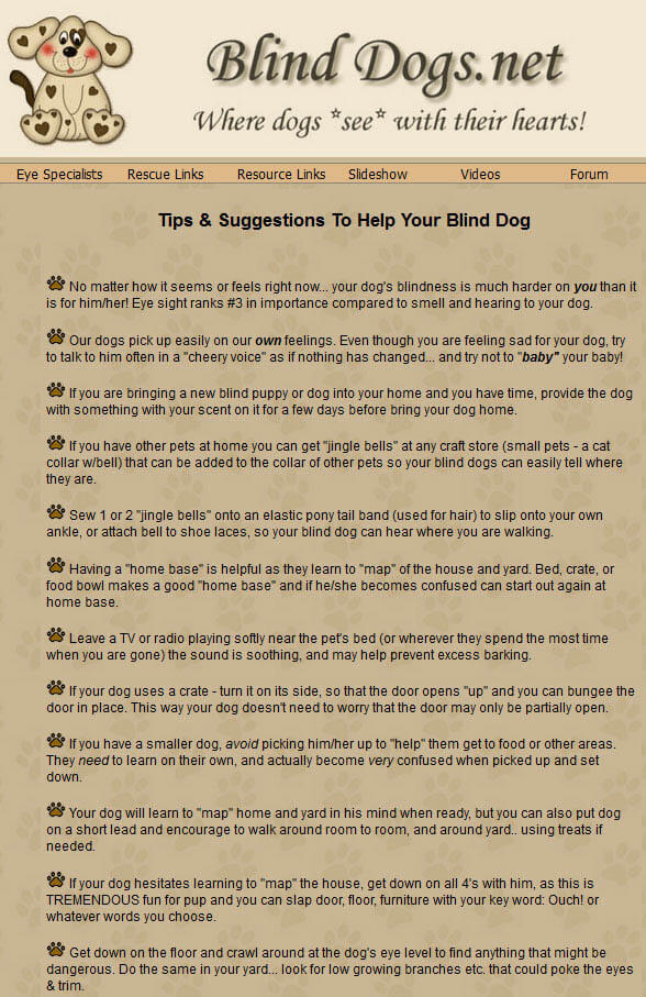 BLIND DOG TIPS by WWW.BLINDDOGS.NET