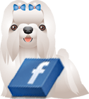 DOGICA&reg on FACEBOOK
