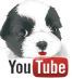 DOGICA&reg on YOUTUBE