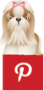 DOGICA&reg on PINTEREST