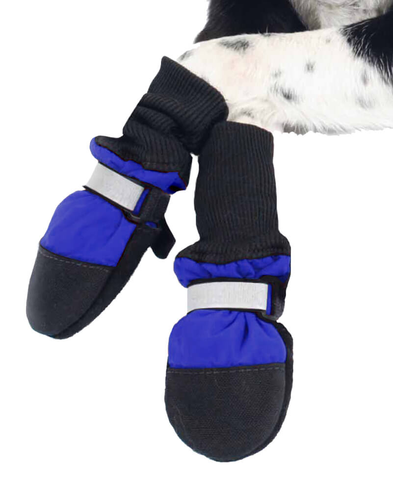 Dog Shoes and Boots