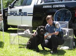 DOG POLICE, K9, MEDICINE AND LAW CAREERS and WORK