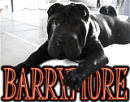 BARRYMORE's Official Homepage