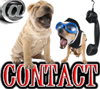 CONTACT DOGICA®