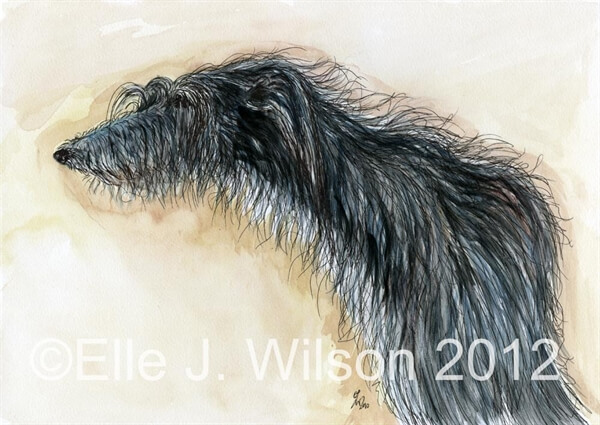 DOG ART, DRAWINGS, PAINT by Elle J. Wilson