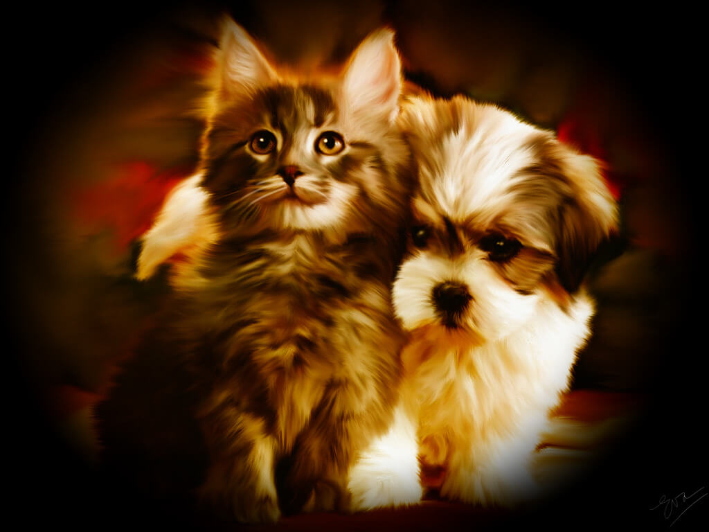 PLAY FREE ONLINE DOG and CAT GAMES