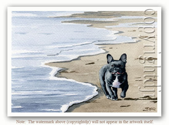DOG ART, DRAWINGS, PAINT by David J. Rojers