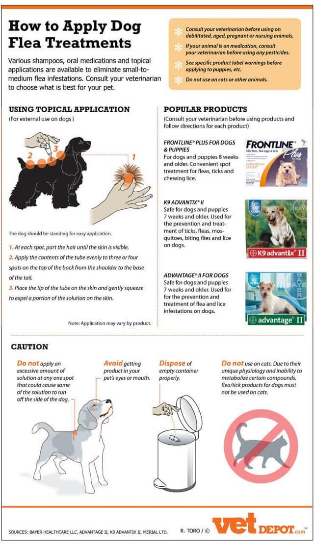 Dog Fleas, Mites and Ticks - HOW THE REMEDIES TREATMENTS WORKS?