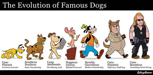 MODERN THEORY OF DOG EVOLUTION