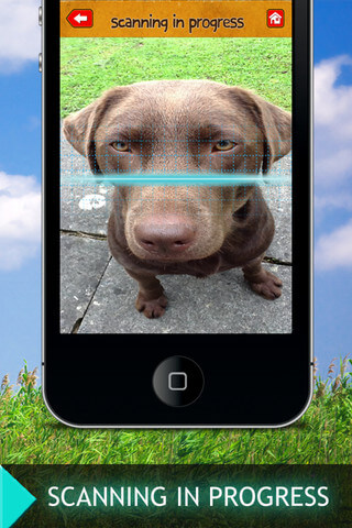 Download and Install Dog and Puppy Cellular & Mobile Applications for Android, Iphone, LG, Samsung, Nokia