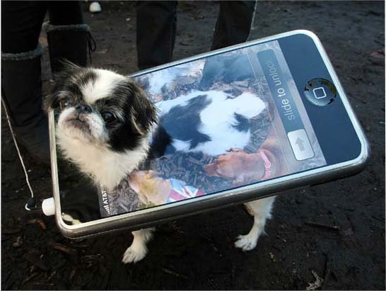 Dog and Puppy Cellular & Mobile Applications for Android, Iphone, LG, Samsung, Nokia - Image (c) by Mario Terra (GettyImages)