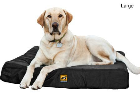 BUY THIS INDESTRUCTIBLE BEST DOG BED COUCH SOFA ONLINE