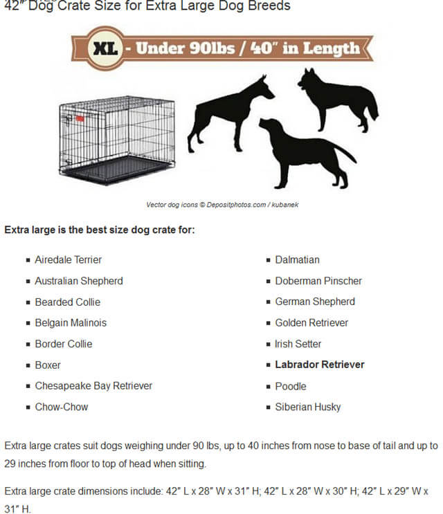THESE MEASURE CHARTS (c) by LABRADORTRAININGHQ.COM !!!