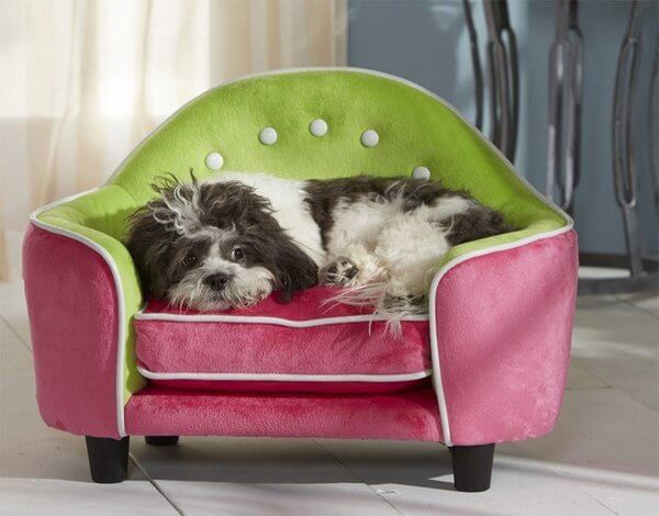 BUY ONLINE BEST, COMPHATIBLE, CUSTOM, MODERN LUXURY DOG & PUPPY BEDS and COUCHES, FOR LARGE & SMALL DOG BREEDS