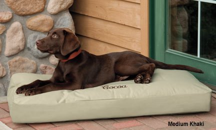 BUY THIS BEST DOG BED COUCH SOFA ONLINE