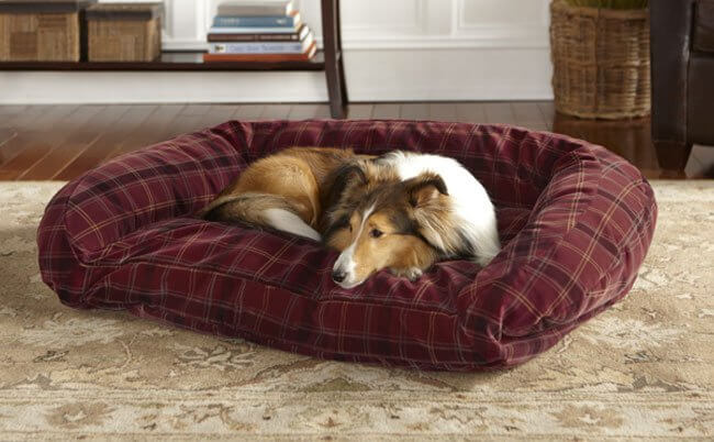 MODERN LUXURY CUSTOM COMFORTABLE DOG AND PUPPY BEDS and COUCHES, SOFAS & FURNITURE FOR DOGS