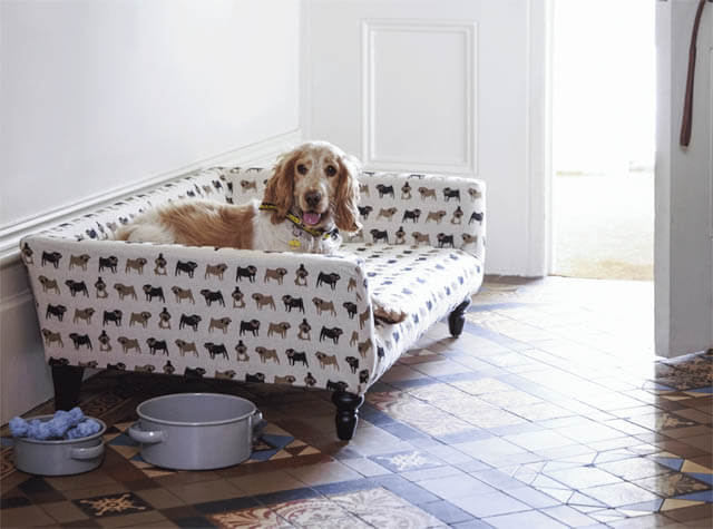 BEST ORTHOPEDIC DOG BEDS, COUCHES, SOFAS