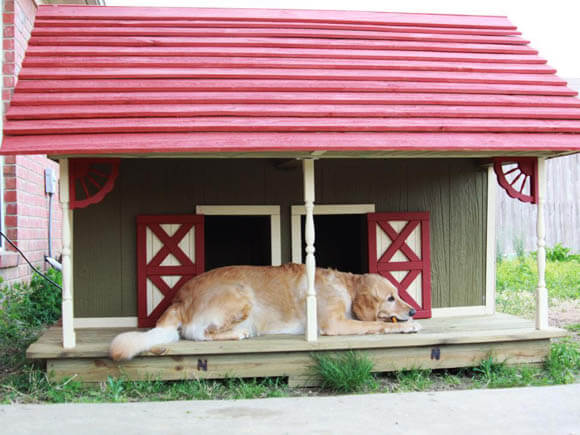 Greta and Gypsy's Barn - CREATIVE DESIGNER DOG & PUPPY HOUSES, KENNELS