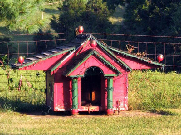 Wing House - CREATIVE DESIGNER DOG & PUPPY HOUSES, KENNELS