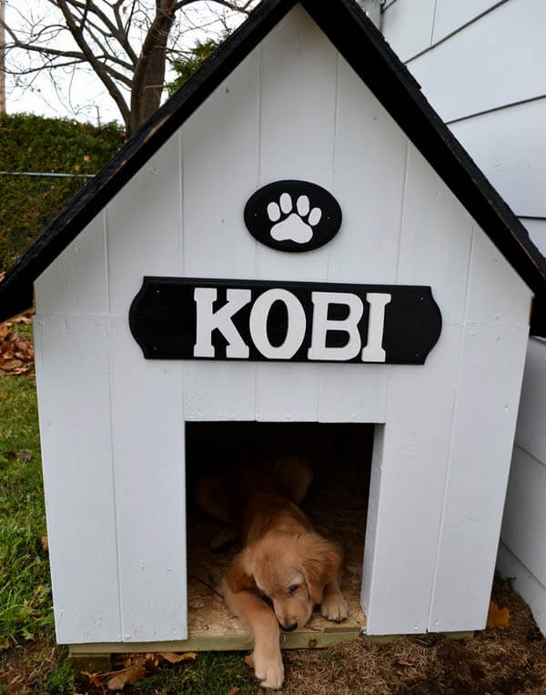 Simple DIY Doghouse - BEST OUTDOOR DOG & PUPPY HOUSES, KENNELS, CAGES, CRATES, IGLOOS, HOMEMADE AND DIY DOGHOUSES