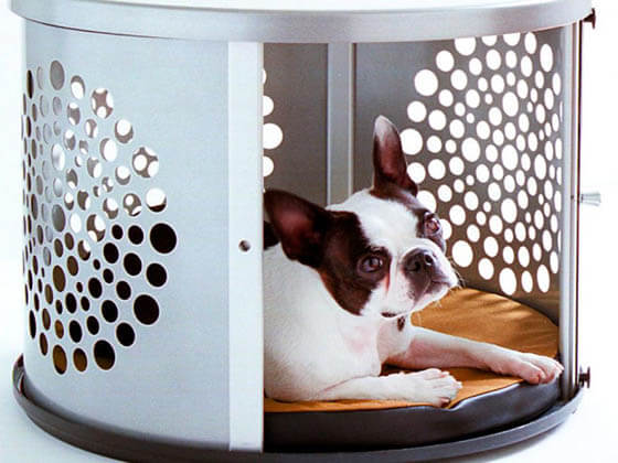 Product and Photo by DenHaus, Inc. - CREATIVE DESIGNER DOG & PUPPY HOUSES, KENNELS