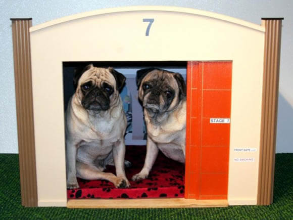 Hollywood Sound Stage - CREATIVE DESIGNER DOG & PUPPY HOUSES, KENNELS