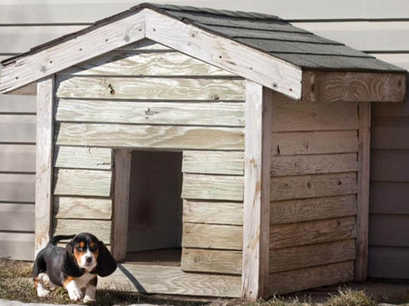 Classic Design - CREATIVE DESIGNER DOG & PUPPY HOUSES, KENNELS