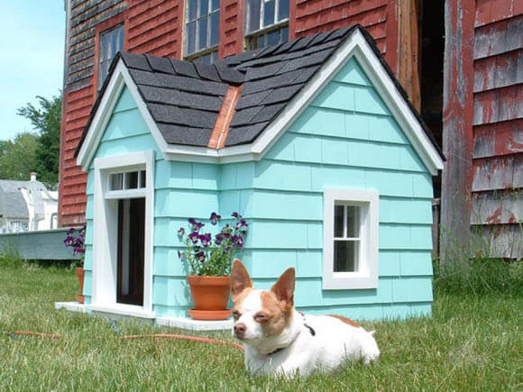 Curb Appeal - CREATIVE DESIGNER DOG & PUPPY HOUSES, KENNELS