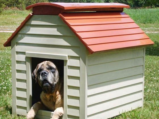 Product and Photo by New Age Pet - CREATIVE DESIGNER DOG & PUPPY HOUSES, KENNELS