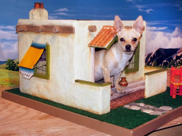 Chihuahua's Pueblo - CREATIVE DESIGNER DOG & PUPPY HOUSES, KENNELS