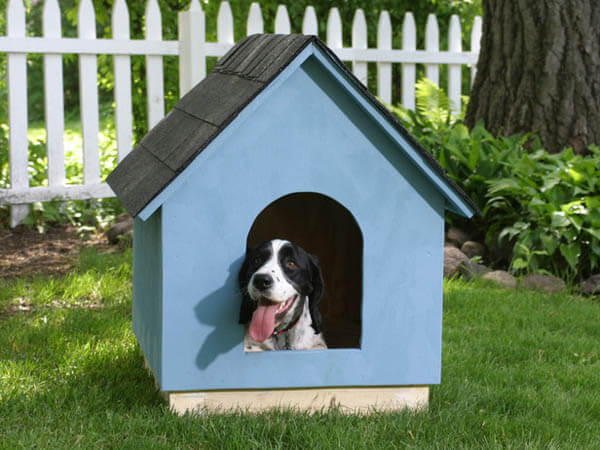 Blue Outdoor Doghouse- BEST OUTDOOR DOG & PUPPY HOUSES, KENNELS, CAGES, CRATES, IGLOOS, HOMEMADE AND DIY DOGHOUSES