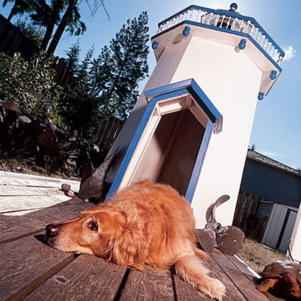 Church Ground Doghouse - BEST OUTDOOR DOG & PUPPY HOUSES, KENNELS, CAGES, CRATES, IGLOOS, HOMEMADE AND DIY DOGHOUSES