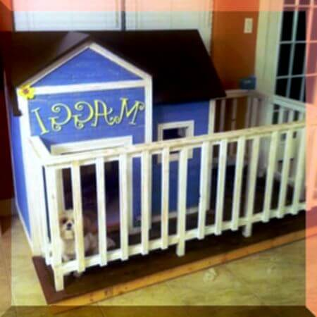 HOW TO TRAIN YOUR DOG & PUPPY TO LOVE DOGHOUSE & KENNEL