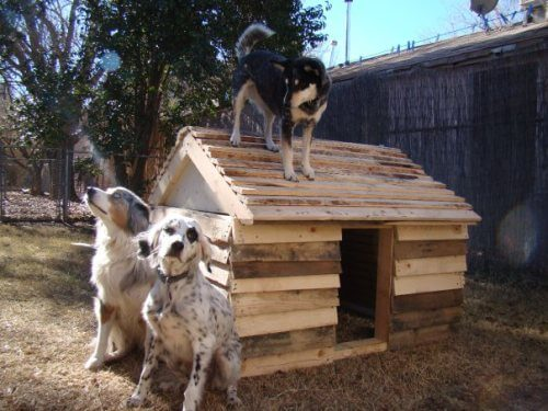 HOMEMADE DIY DOG & PUPPY HOUSES, KENNELS