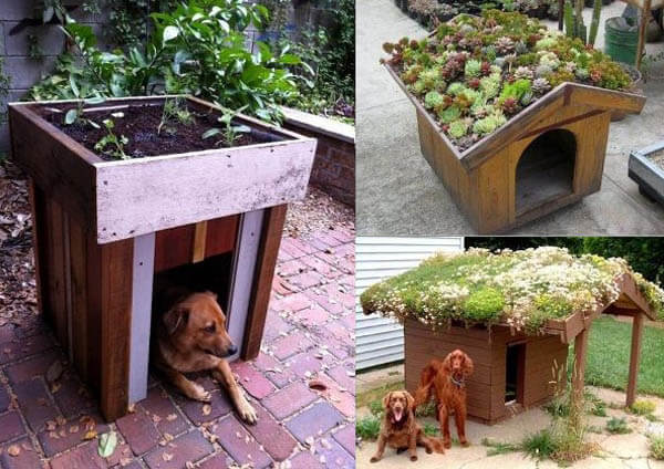 Garden Outdoor Doghouse - BEST OUTDOOR DOG & PUPPY HOUSES, KENNELS, CAGES, CRATES, IGLOOS, HOMEMADE AND DIY DOGHOUSES